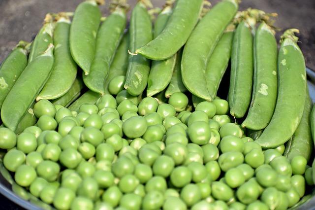 Semínka na klíčení jsou významným krokem v cestě za svým zdravím